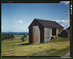 Farmland in the Catskill country, in New York State. After the US Civil War, Norris C. Bull -- my ancestor Arthur Bull's older brother -- turned from wagon/carriage making to farming in Delaware County, N.Y. By: The Library of CongressBy: The Library of Congress